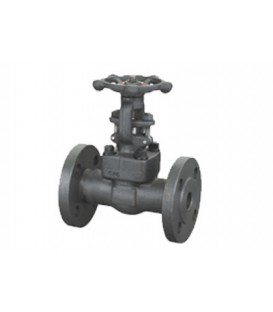 Integral flange gate valve