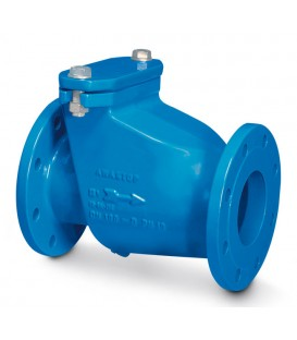 Check valve, rubber swing type