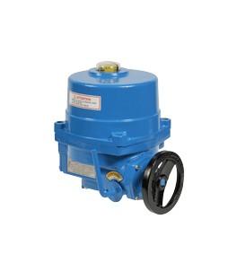 NA - Electric actuator