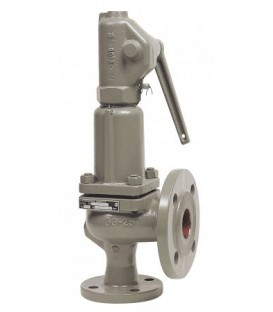 6301 - Cast iron - Flanged PN16
