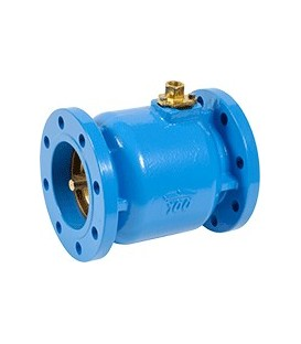 292050 - BFF - Coaxial cast iron valve