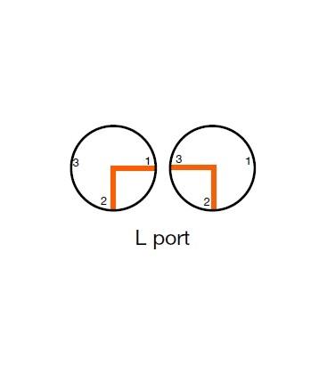 513 - PN16 L port