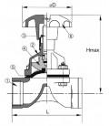 469021 - Diaphragm Valve