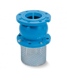 Axial (nozzle) type check valves