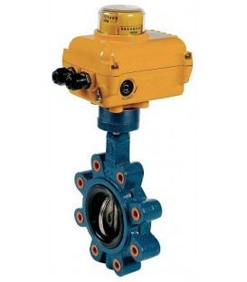 1133 - Cast iron butterfly valve SA05 NA09