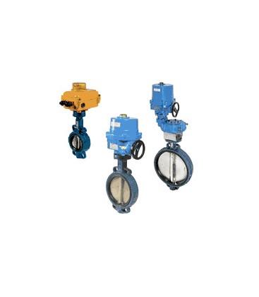 1121 - Cast iron butterfly valve SA05 NA09