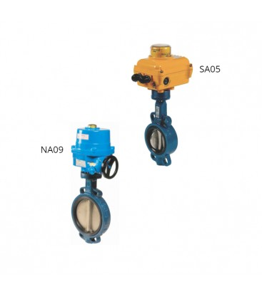 1123 - Cast iron butterfly valve SA05 NA09