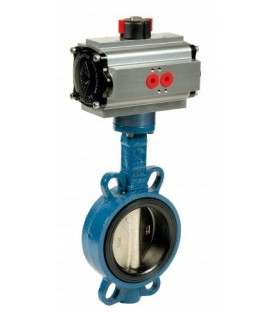 1125 - Cast iron butterfly valve double acting