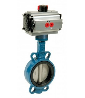 1123 - Cast iron butterfly valve double acting