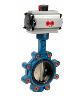 1135 - Cast iron butterfly valve lug type double acting